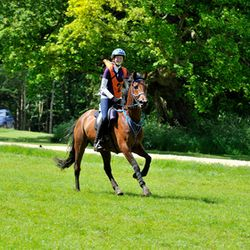 80km FEI 1* 6th place - June 2014 AGC photography