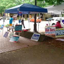 Manning the booth at the Farmers' Market (and dancing).