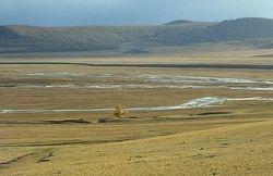 Trizale Steppe