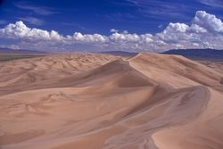 Trizale Desert