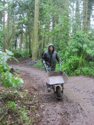 Getting started in the rain: Aaron & his barra
