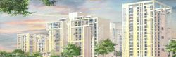 Hibiscus Residential Project