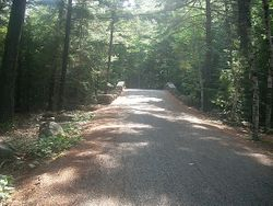 CARRIAGE ROAD IN ACADIA