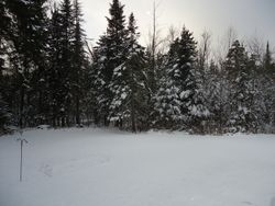 First big snow 2016