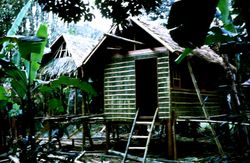 Old classrooms were mae of bamboo and nipa which is still utilized in the present