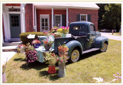 Arlington Garden Club Flower Show!