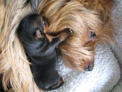 Mummy and baby