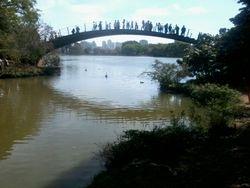 The Mini-Bridge