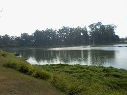 Ibirapuera lovely lake