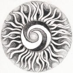 Swirly Sun