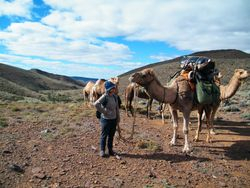 Trekking into unknown Regions with Outback Australian Camels