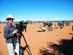 ABC Television with Outback Australian Camels