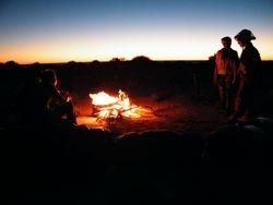 Perfect camping. Camel Safaris on Beltana Station, Flinders Ranges, South Australia