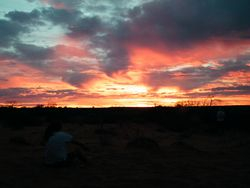 Sunset during camel safari, Beltana Station, South Australia