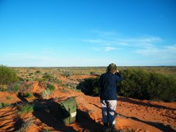 Spectacular views from the sand dunes, Camel Safaris on Beltana Station, South Australia