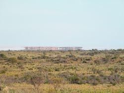 Mirage on Lake Torrens, Outback Australian Camels, Beltana Station Camel Safaris, Flinders Ranges, South Australia