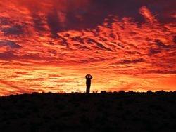 Outback Sunset whilst on a camel Safari, Outback Australian Camels, Beltana Station, Flinders Ranges, South Australia
