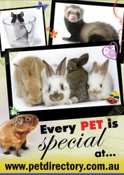 The Pet Directory