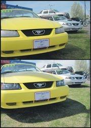 Mustangs a pair