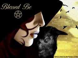 Crow & Raven ~
