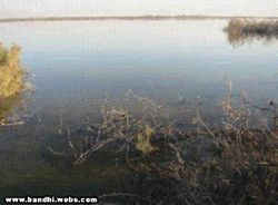 Aamir Jee Lake