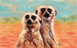 Meerkats ,On Guard.