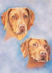 2 beautiful Hungarian Vizsulas