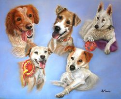 Five rescue dogs ,
