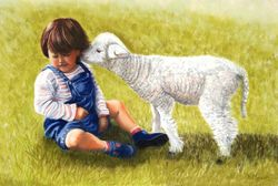 Maya & the Lamb 2 . Pastels on Pastel Mat .30x40cm