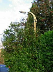 Ashburnham Road - Ampthill