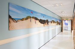 KINGS HOSPITAL Dune Frieze installed