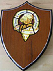Replica Shield