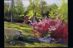 Spring Flowers-Skylands