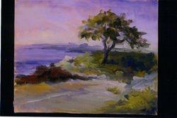 Back Beach-Rockport