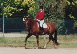 Julie Doherty Riding Belle Beag
