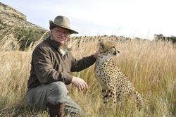 Cheetah Breeding Farm in Free State