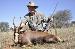 Blesbok from Cowdray ranch