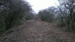 A view up the incline after the tractor had cut a path through.