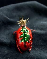 Christmas Beetle 2010