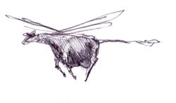 Dragonfly Cow