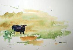 Watercolor Angus