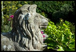 The lion guards the garden!