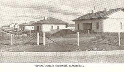 c1923 Blandfordia (Forrest)