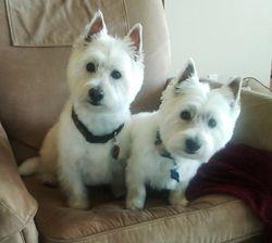 Annie and Leo