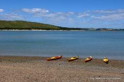 Whangarei Harbour1