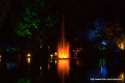 Festival of Lights, Taranaki