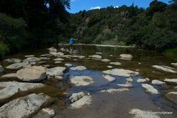 Waihi River