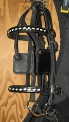Buck Stitched Bridle/Cavesson