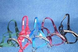 Inlay noseband halters