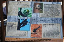 Informative Signage, Weymouth Woods Sandhills Nature Preserve